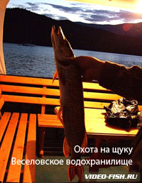 Зимняя рыбалка на Маныче в Ростовской области видео