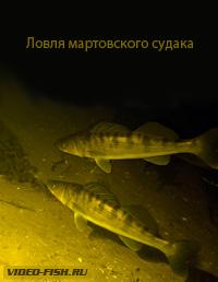 карася. ельцов и другую мелкую рыбу.  Из-за того что у