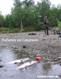 Алексей гусев диалоги о рыбалке