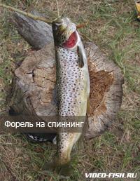 Мастер-класс с Алексеем Чернушенко