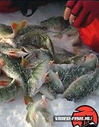 озеро актюбинское челябинская область рыбалка видео