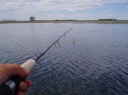 как поймать рыбу в пруду без удочки