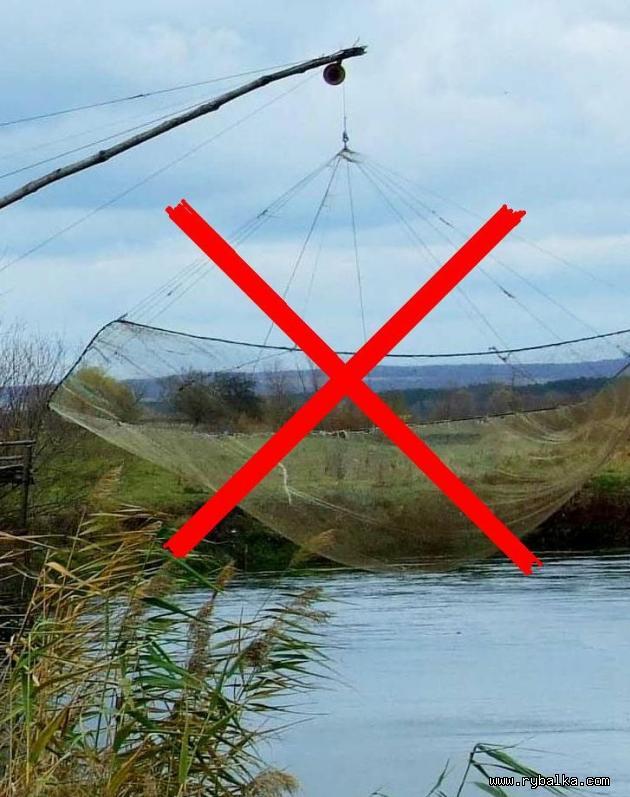 Штрафы за рыболовные косынки