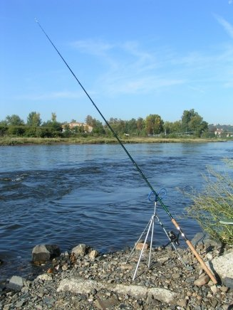 Отчёты статьи о рыбалке ловля на спиннинг фото рыбалка
