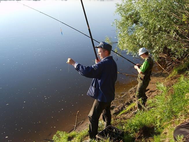 правила рыбной ловли в новосибирской области в 2017 году