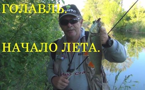 ютуб о рыбалке торрент